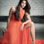 Pooja Hegde Cancels Bollywood Shoot For Prabhas
